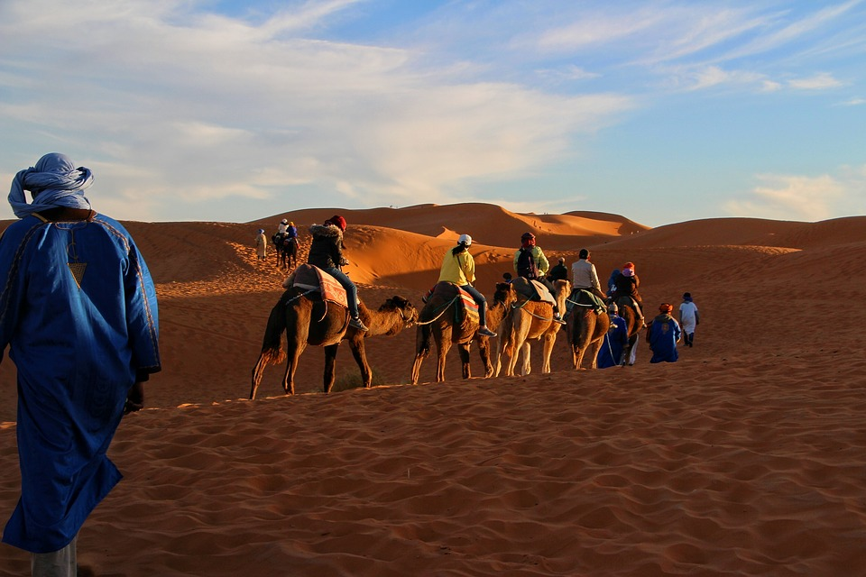Camel tours in Morocco